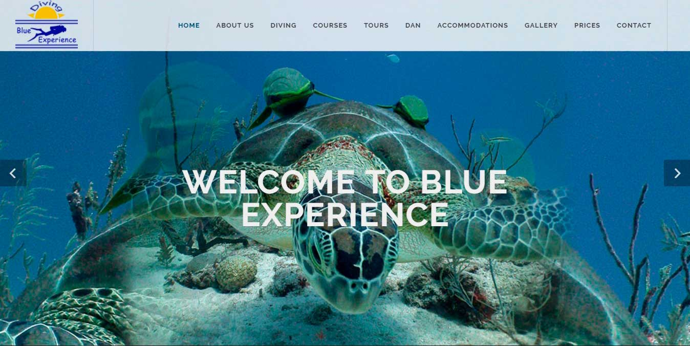 Blue Experience Diving Riviera Maya